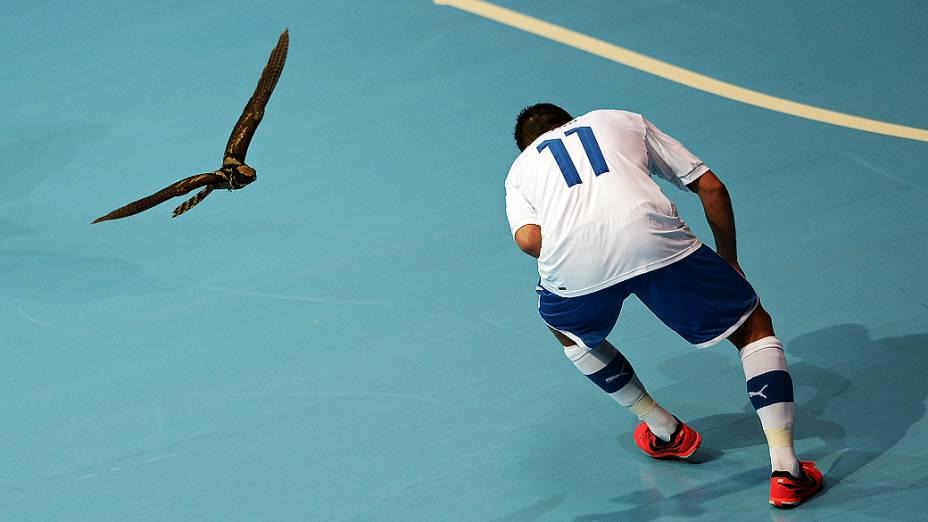 Uma coruja interrompeu por alguns minutos o duelo entre Itália e México pela última rodada da fase de grupos da Copa do Mundo de futsal, na Tailândia