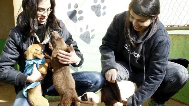Eles receberam cem cobertas e 150 roupinhas para cachorros
