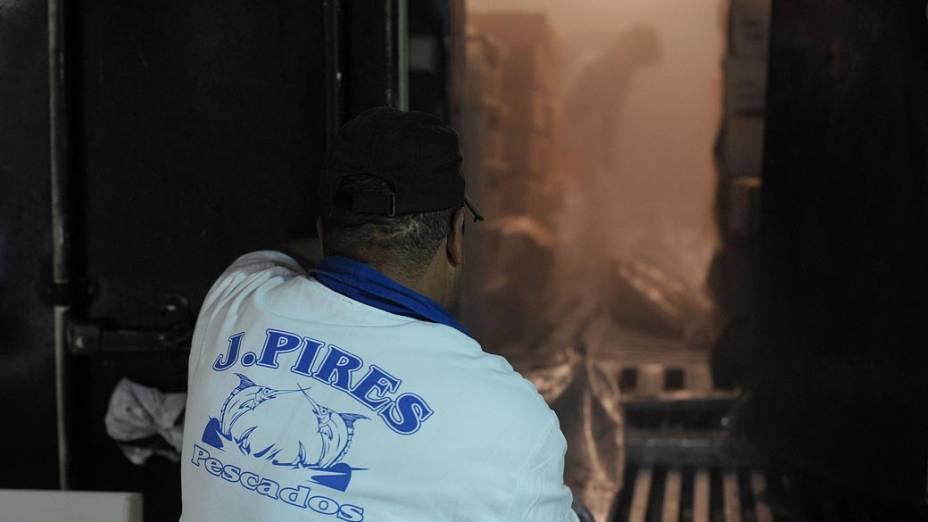Homem dentro de uma caminhão frigorífico descarrega peixes para levar ao CEAGESP