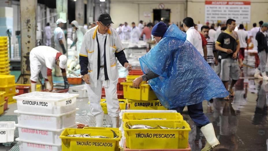 Mercado de pescados no CEAGESP