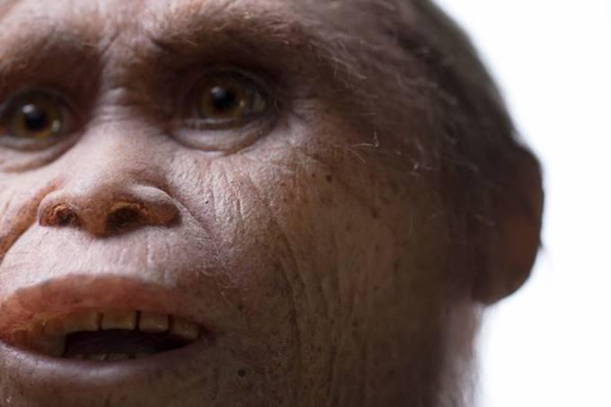 ciencia-fossil-hobbit-20160608-002
