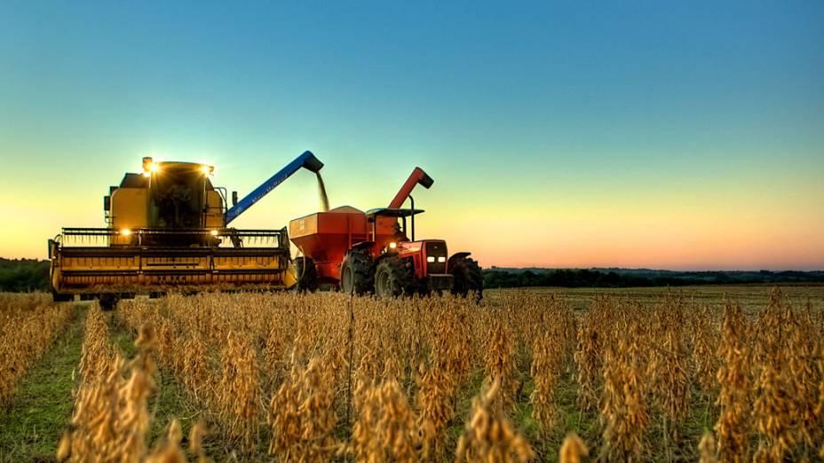 Agricultura e mineração, 18,9%