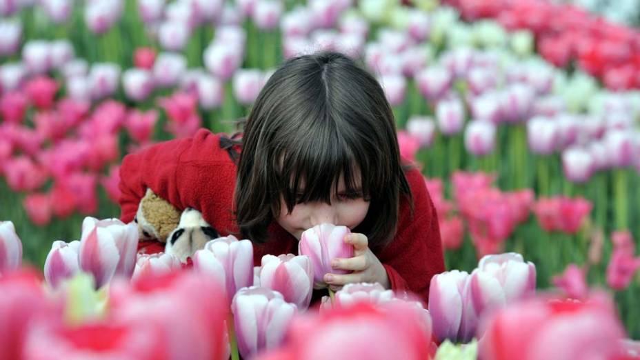 Festival de jardinagem Bundesgartenschau, na cidade de Koblenz, Alemanha