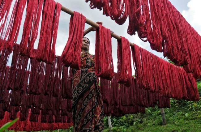 Mulher pendura fios tingidos para secar em tecelagem na cidade de Agartala.