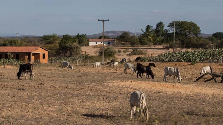 Expedição Veja na estrada próximo a cidade de Brumado rumo à cidade de Janaúba (MG)