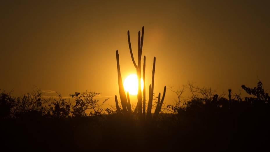 Pôr-do-sol próximo à cidade de Brumado rumo a cidade de Janaúba (MG)