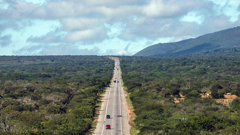 Estrada corta o sertão baiano no caminho para Irecê (BA)