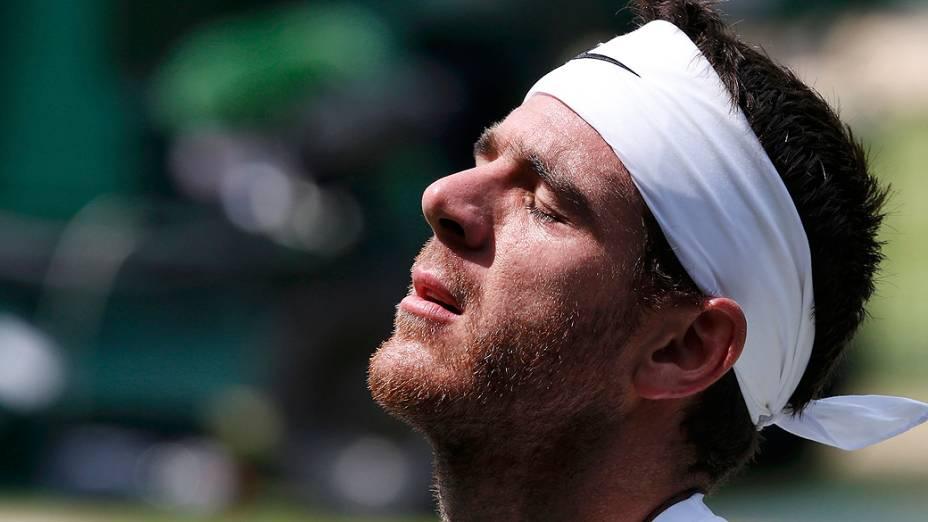 Argentino Juan Martin Del Potro foi derrotado por Novak Djokovic na semifinal do torneio de Wimbledon 2013