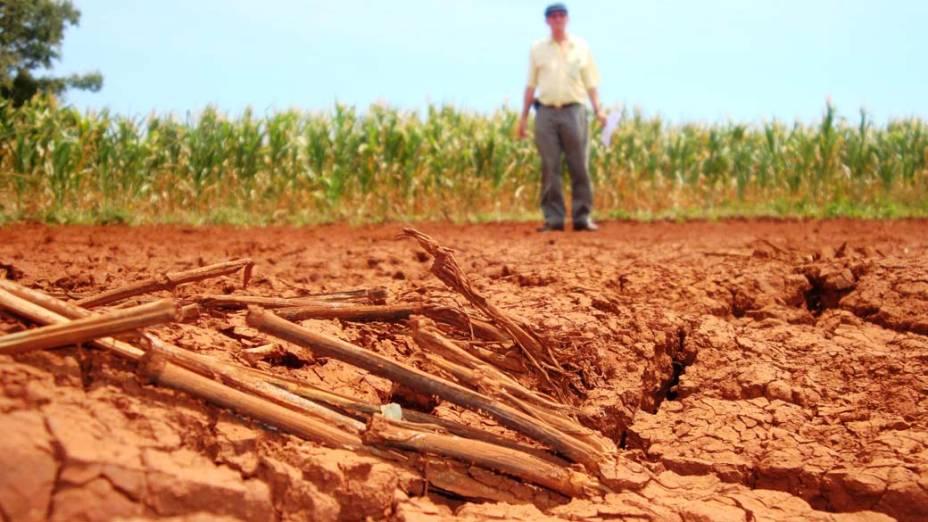 Estiagem prejudica lavouras em Joia, no Rio Grande do Sul