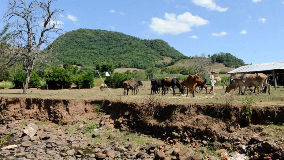 Açude em que gado bebe água com capacidade reduzida devido à seca