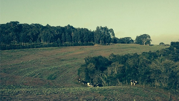 Expedição VEJA - Na foto, paisagens ao oeste do Paraná