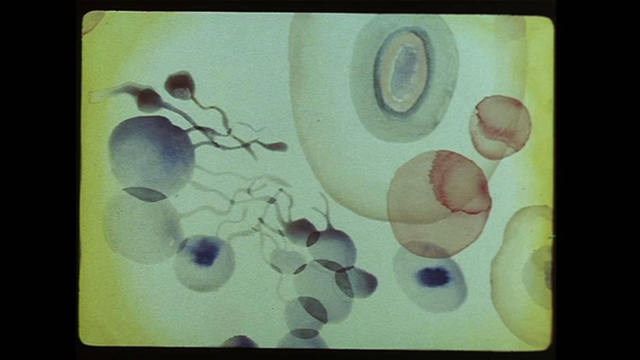 Obra Zwanzig Bilder aus dem Leben einer Komposition (Vinte Imagens da Vida de uma Composição) de Kurt Kranz