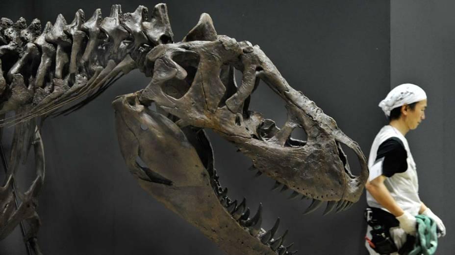 Em Tóquio, exposição de dinossauros no Museu Nacional da Natureza e Ciência