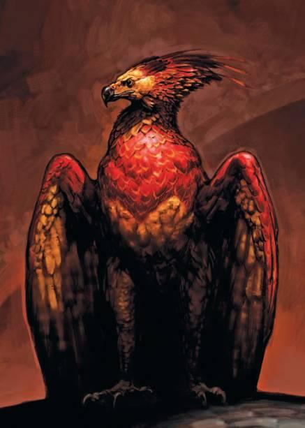 Estudo de Fawkes, a fênix, para Harry Potter e a Câmara Secreta (2002), por Adam Brockbank, explorando as cores da criatura e possíveis estilos de crista e asas