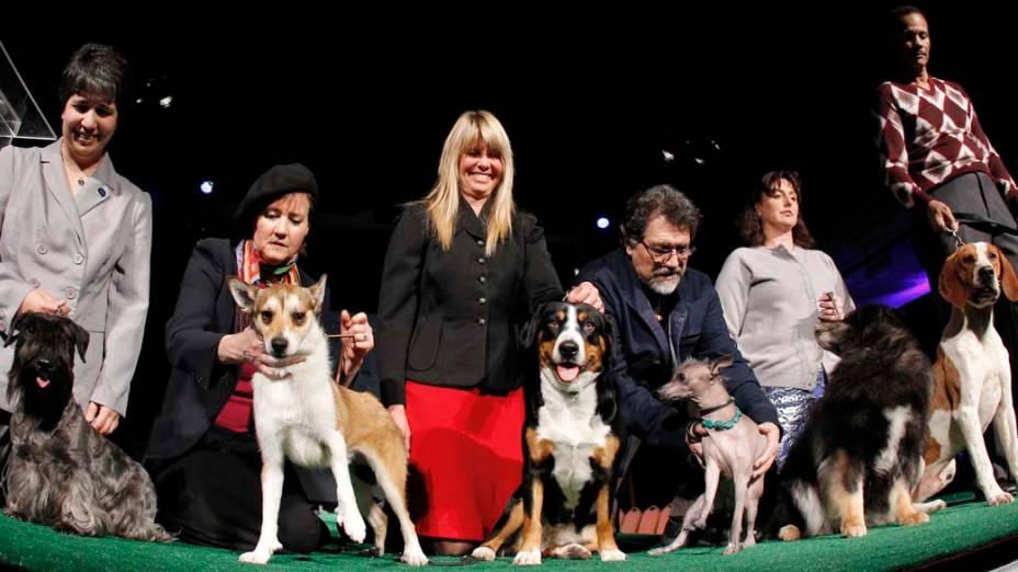 """As seis raças que aparecem pela primeira vez no 136º Show de Cães do Clube """"Westminster Kennel"""" em Nova York"""