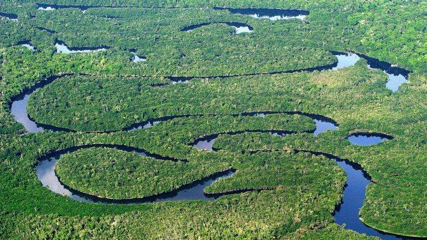 floresta-amazonica-vista-aerea-20110624-original.jpeg