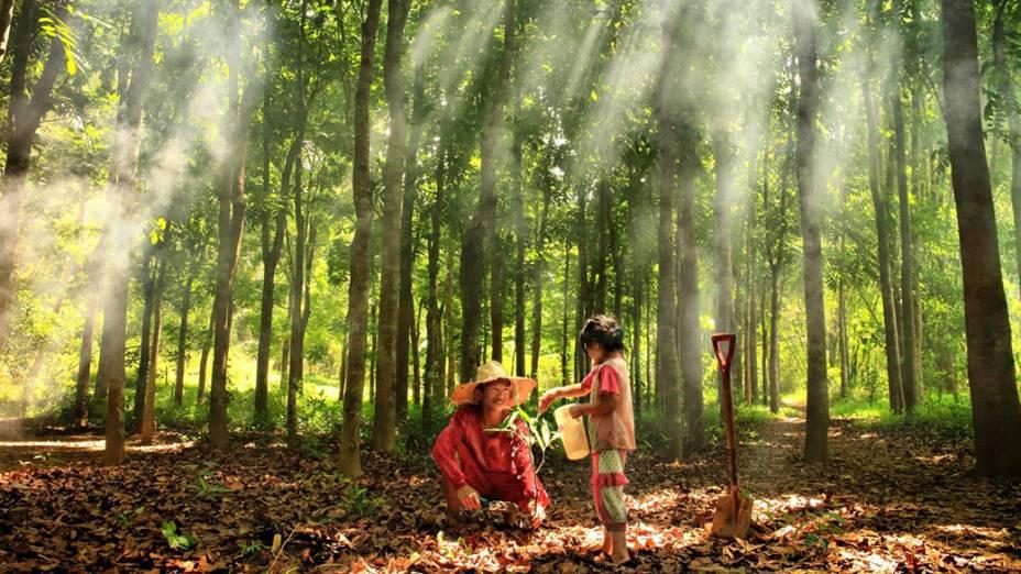 Uma criança rega uma planta em uma floresta em Rodriguez, nas Filipinas