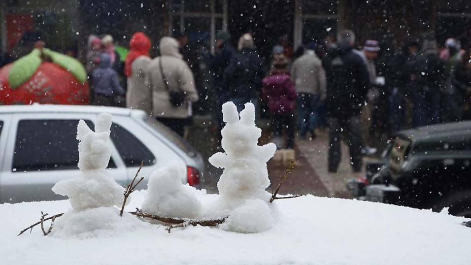 Neve na cidade de São Joaquim em Santa Catarina nesta segunda-feira (22)