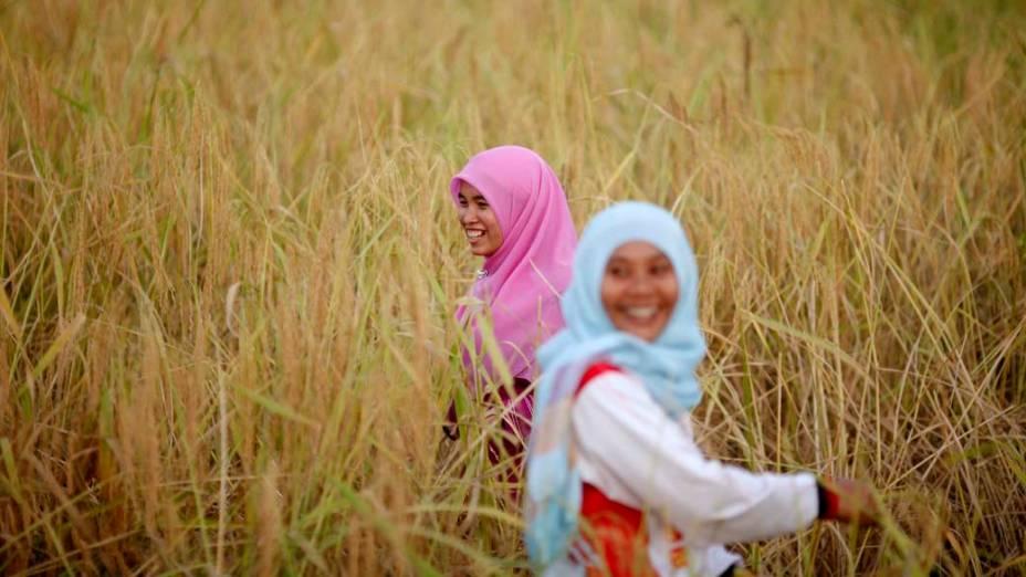 Garotas muçulmanas em arrozal na província de Yala, Tailândia