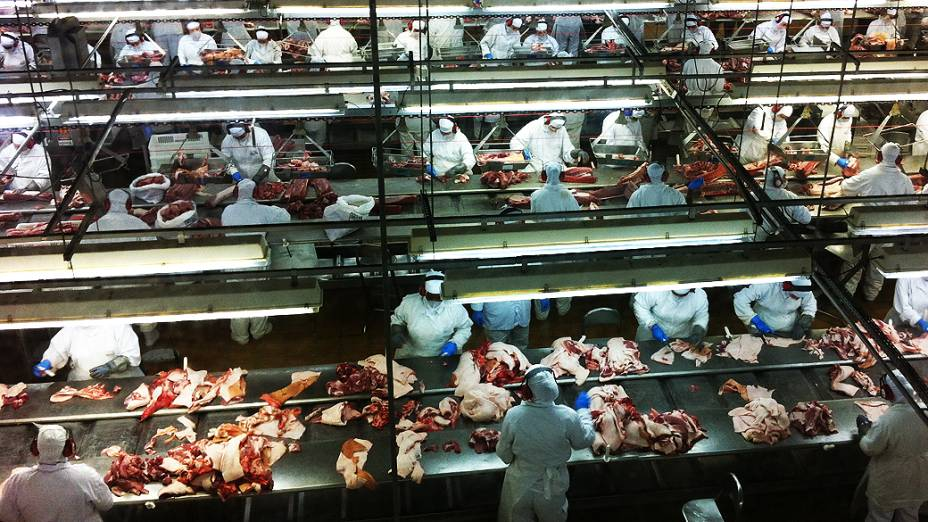 Abate de suínos no frigorífico Aurora, em Chapecó (SC), que emprega cerca de 400 haitianos