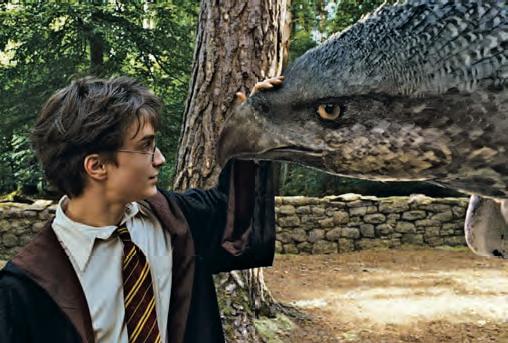 Harry Potter (Daniel Radcliffe) cumprimenta o hipogrifo Bicuço em cenas de HarryPotter e o Prisioneiro de Azkaban (2004)