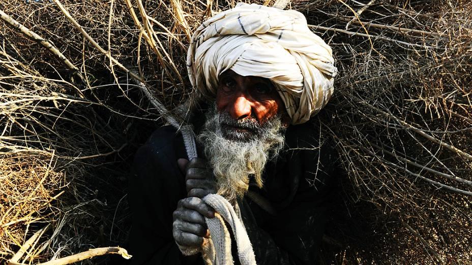 Idoso afegão carrega lenha sobre os ombros em Herat, nesta quinta-feira (20)