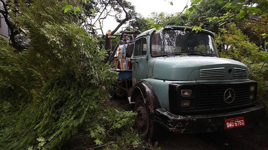 Uma árvore caiu após ser atingida por um caminhão caçamba e interditou a Avenida 9 de Julho, no Itaim Bibi em São Paulo