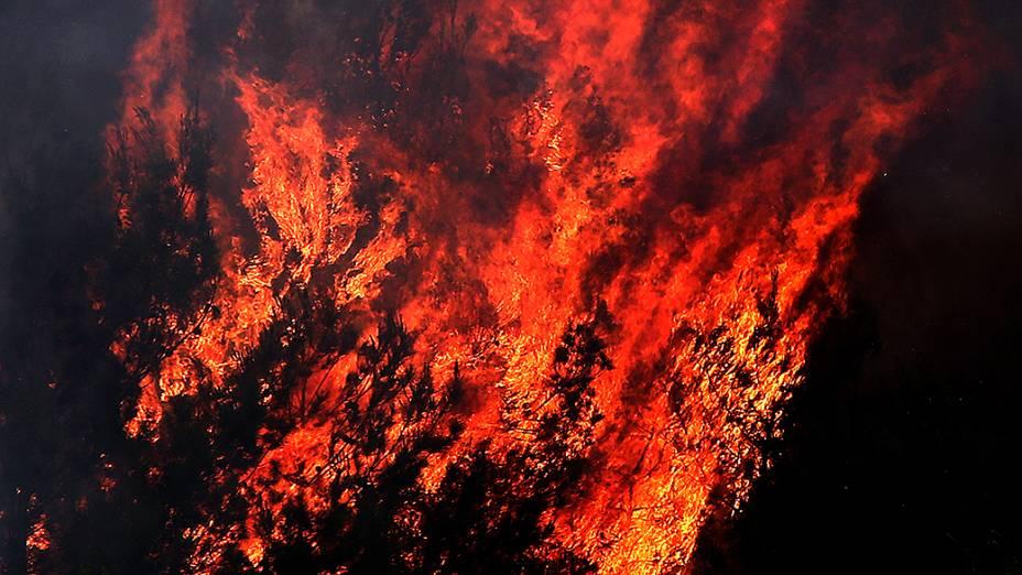 Incêndio consome floresta de pinheiros perto de várias aldeias na periferia de Beirute, no Líbano
