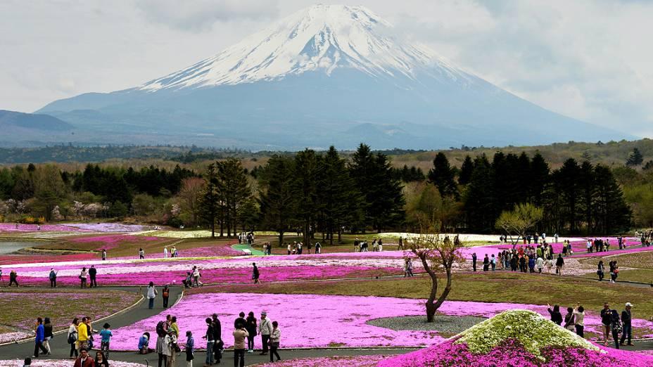 Turistas visitam parque aos pés do Monte Fuji em época de florescimento