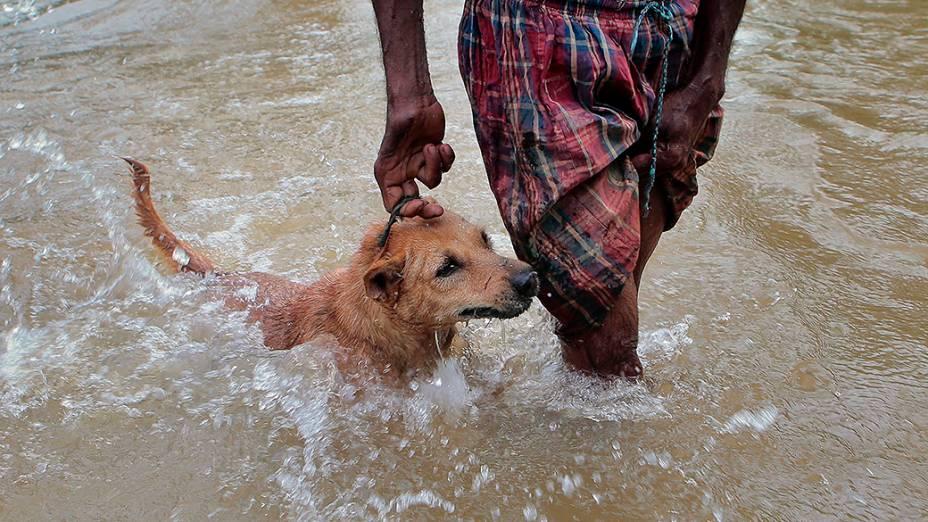 Homem carregou seu cachorro após uma tempestade atingir a cidade de Colombo, no Sri Lanka