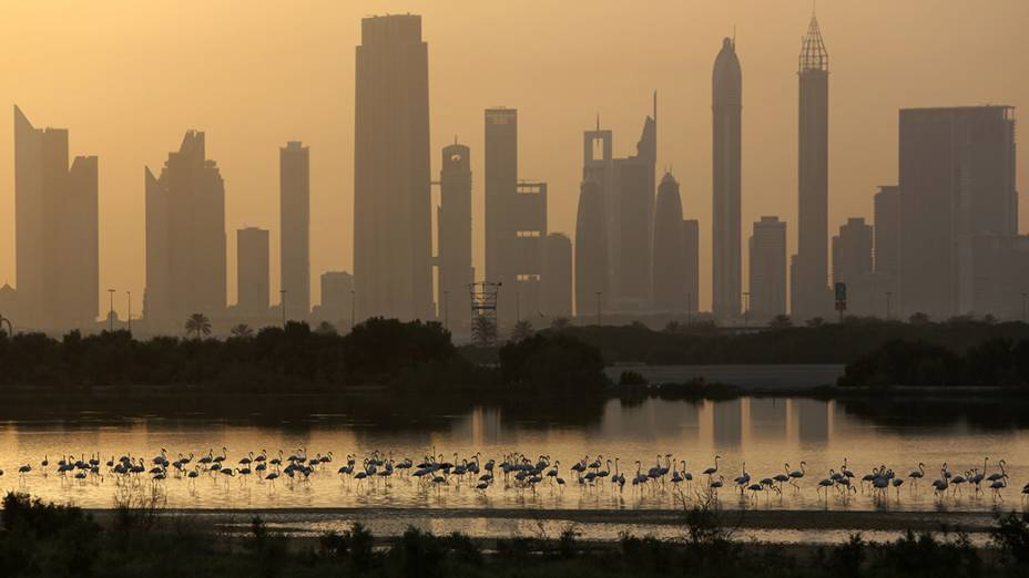 Arranha-céus, rodovia e flamingos marcam a pasaigem da cidade de Dubai, nos Emirados Árabes Unidos