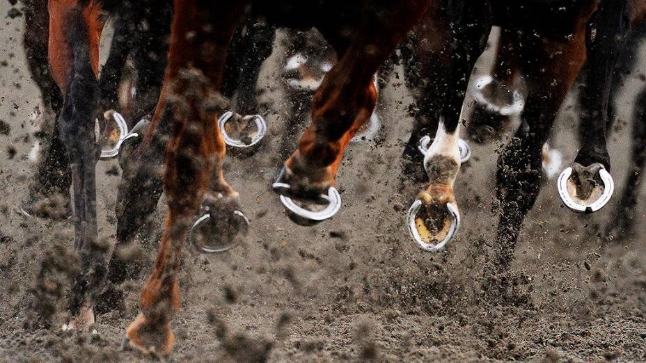 Cascos de cavalos registrados durante competição em Sunbury, Inglaterra