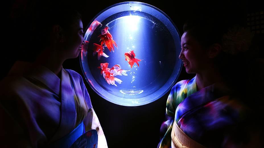 Mulheres usando kimono observam os peixes dourados durante cobertura de imprensa do Eco Edo Nihombashi Art Aquarium, em Tóquio