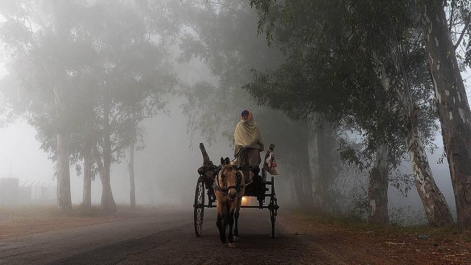 Carroceiro é visto em meio a densa neblina em Suchit-Garh na fronteira com o Paquistão