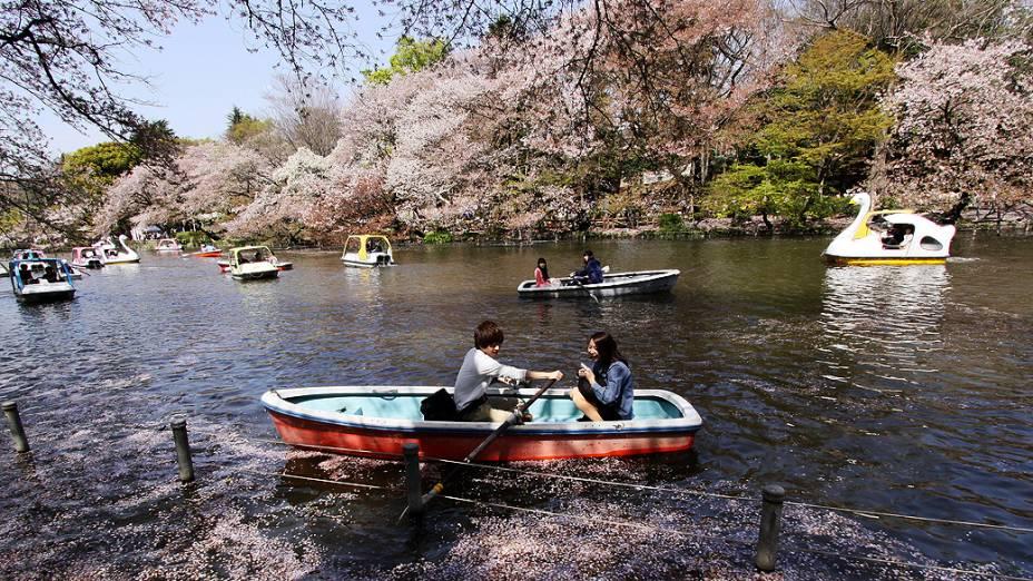 Casal rema em lago coberto de pétalas de flor de cerejeira em parque de Tóquio (Japão)