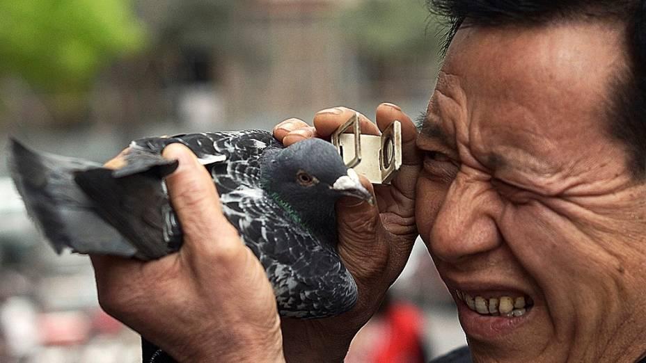 Cliente examina pombo no município de Chongqing. A China já registra 21 casos de gripe aviária