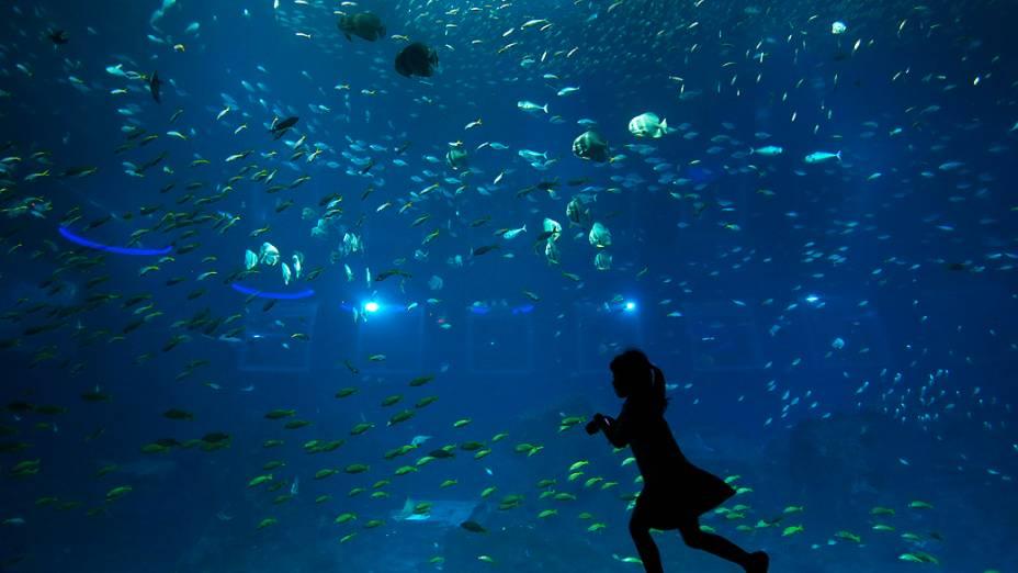 Menina corre para tirar fotos de peixes noResorts World Sentosas S.E.A. Aquarium, em Cingapura
