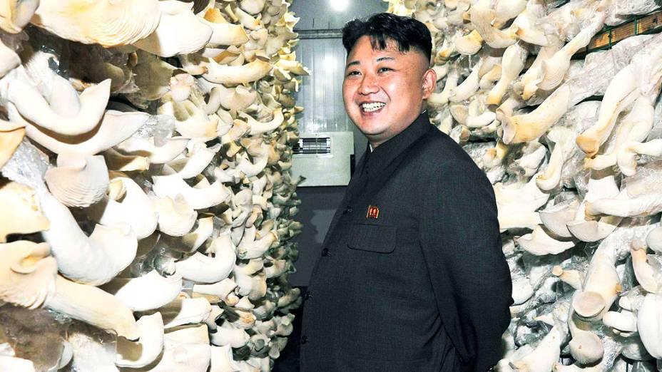 Líder norte-coreano Kim Jong-un visita uma exploração de cogumelos nesta foto sem data divulgada pela Agência de Notícias Central Coreana da Coréia do Norte (KCNA), em Pyongyang