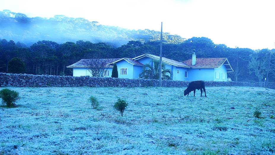 Urupema, em Santa Catarina, registrou temperatura negativa durante a madrugada desta terça-feira (16). Os termômetros chegaram a marcar -4,4ºC. Ao amanhecer, a vegetação estava coberta por uma fina camada de gelo