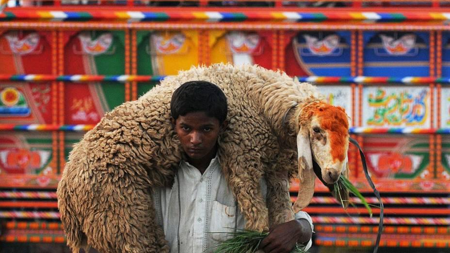 Meninocarrega uma ovelha em seus ombros perto de um mercado de gado em Lahore, no Paquistão