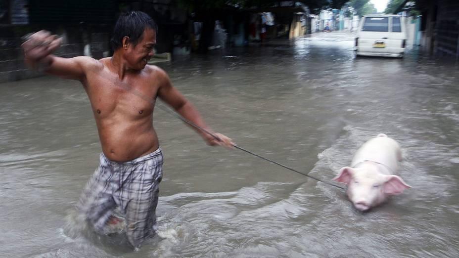 Homem ajuda o seu porco a atravessar uma rua alagada na cidade de Las Pinas, sul de Manila, nas Filipinas