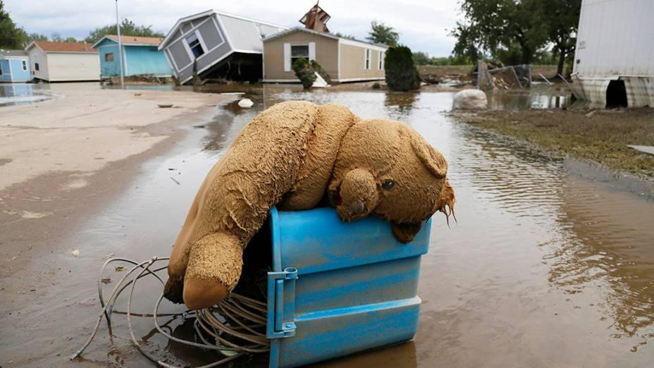 Urso de pelúcia caído sobre uma rua inundada em Eastwood Village, Evans, no estado do Colorado