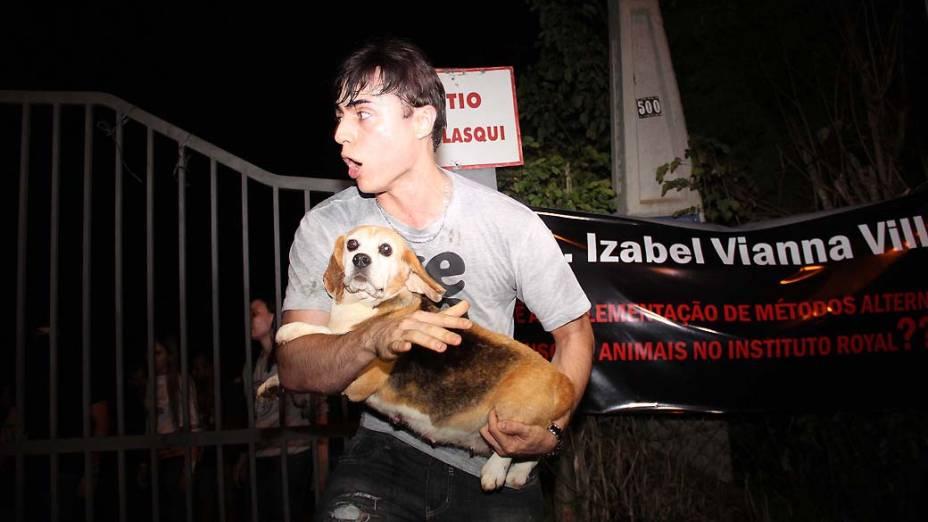 Ativista retira cão da raça beagle que era usado para realização de testes no Instituto Royal em São Roque, São Paulo. Cerca de 150 cães foram resgatados sob a alegação de maus tratos