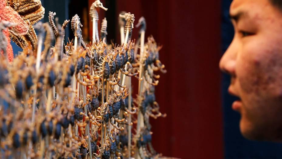 Homem observa espetinhos de escorpião e de cavalo-marinho em uma barraca de comida em Pequim, na China, nesta quinta-feira (14)