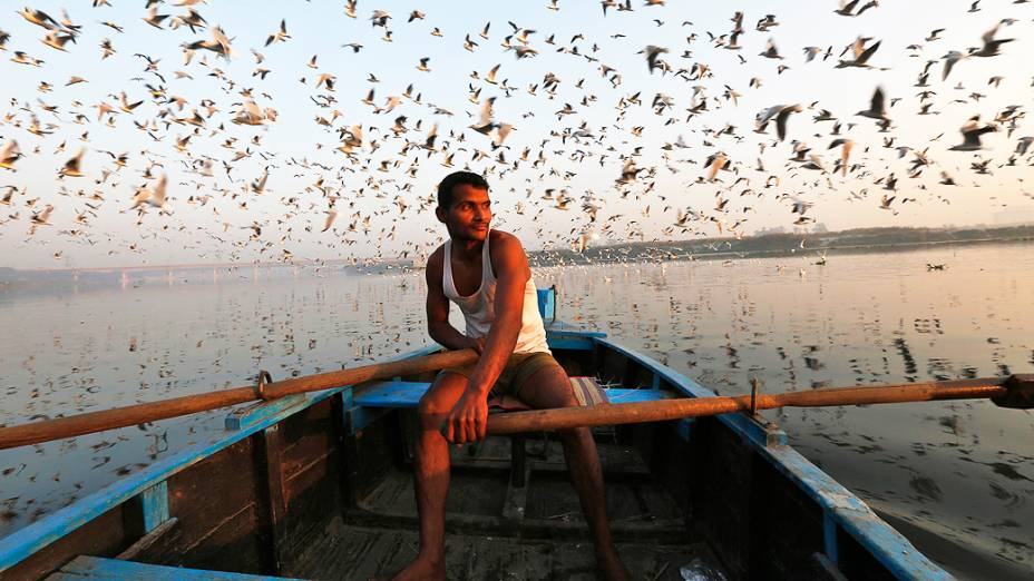 Aves migratórias sobrevoam um homem em seu barco nas águas do rio Yamuna, na velha Délhi, Índia