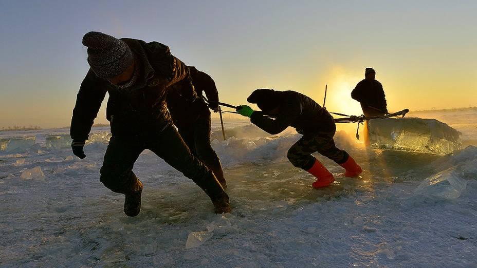 Trabalhadores puxam um cubo de gelo gigante retirado do rio Songhua para montagem das esculturas que serão expostas durante o Harbin Ice and Snow Festival, em Harbin, província de Heilongjiang, na China