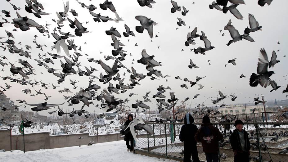 Pombos voam para fora do santuário Karti Sakhi em Cabul, Afeganistão