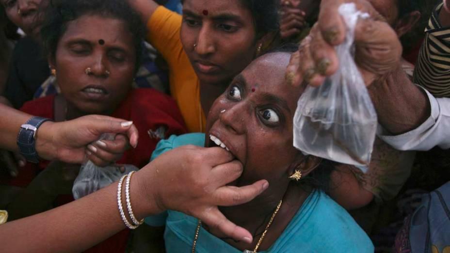 Indiana engole peixe vivo, uma tradição da medicina local para problemas respiratórios