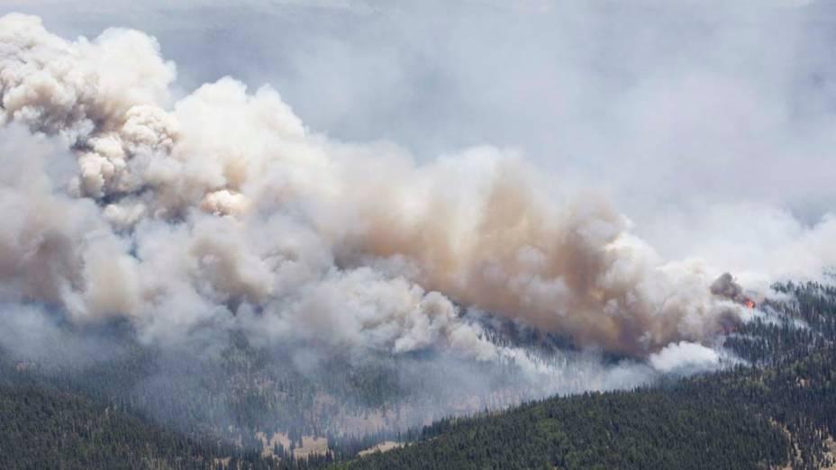 Incêndio na cidade de Greer, Arizona