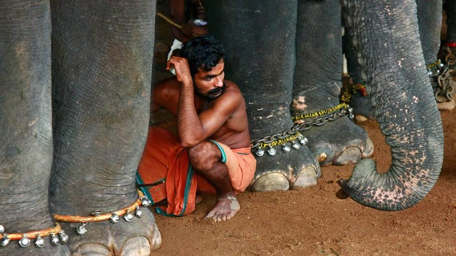 Indiano fica agachado entre elefantes que estão participando de do festival da colheita anual de Onã em um templo na periferia da cidade indiana de Kochi
